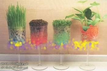 کاشت سبزه هفت سین با خاک ژله ای + تصویر