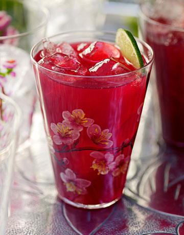 درباره چای قرمز یا چای ترش چه میدانید ؟/عکس