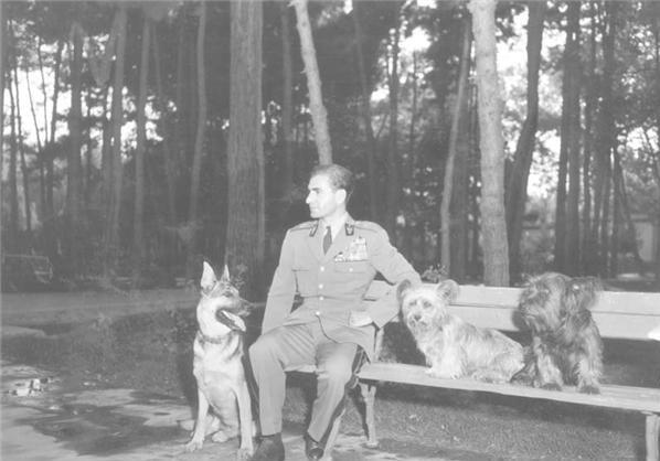 شاه ایرانی در کنار سگ هایش + عکس