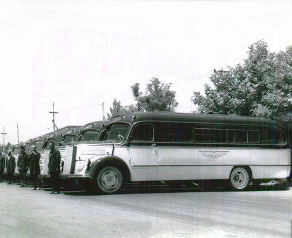 عکس/ اولين اتوبوسهاي شركت واحد