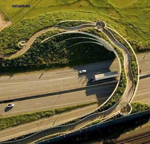 عکس  پل پیاده روی فوق العاده زیبا در آلمان