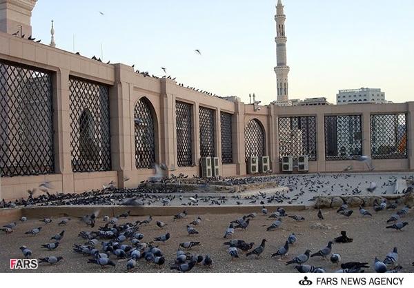 تصاویر|مزار حضرت امّ البنین(س) در قبرستان بقیع