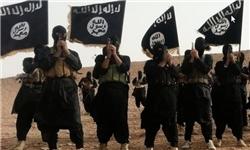 الگوی سازمانی القاعده و داعش