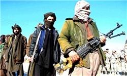 روسیه از احتمال تصرف بخشهای بیشتری از خاک افغانستان توسط طالبان ابراز نگرانی کرد