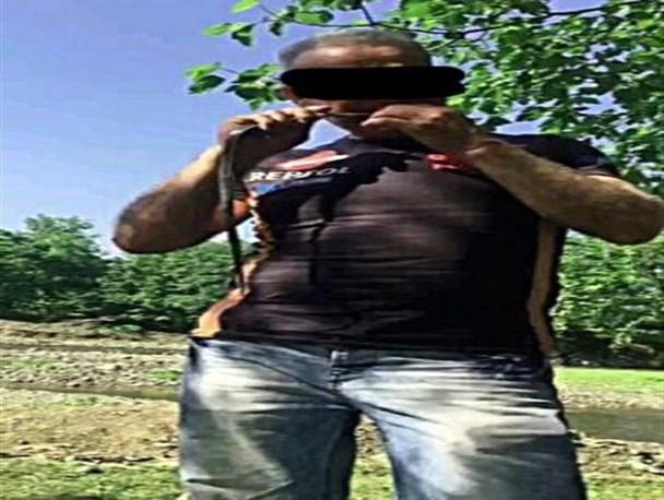 دستگیری مرد مارخور در رشت + عکس